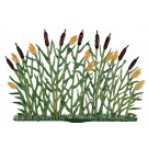 Standing Cattails