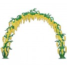 Wisteria arch Yellow