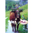 Cow Magnet